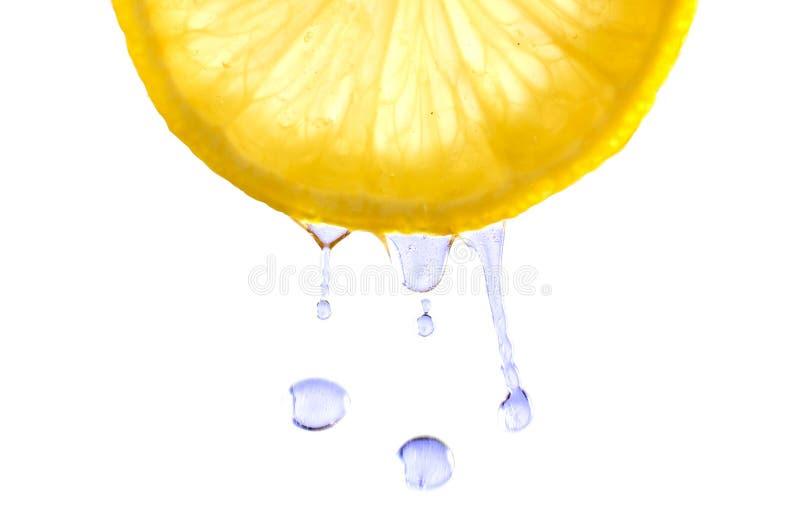Citron juteux photo libre de droits