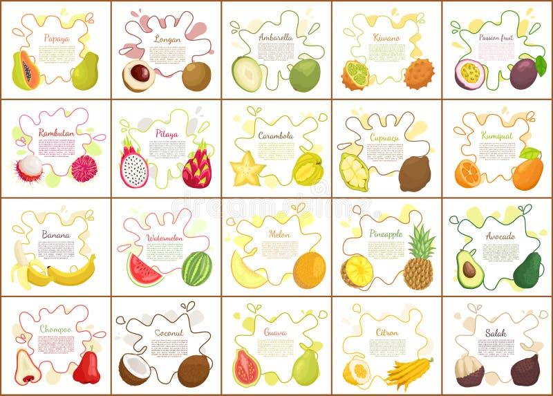 Citron and Kiwano Posters Vector Illustration. Citron and kiwano, durian and pomelo,, pitaya and papaya, longan and rambutan. Passion fruit and ambarella royalty free illustration