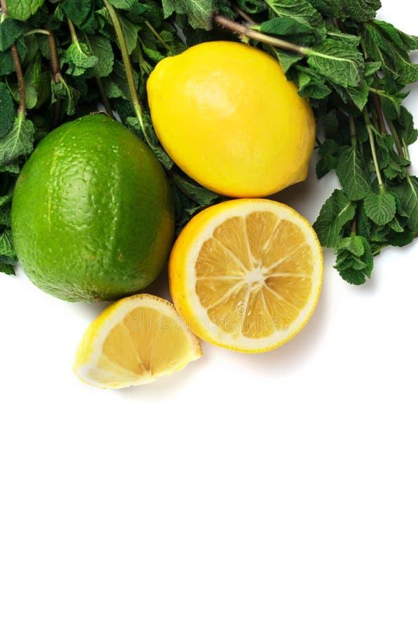 Citron, limefrukt och mintkaramell på vit bakgrund arkivfoto