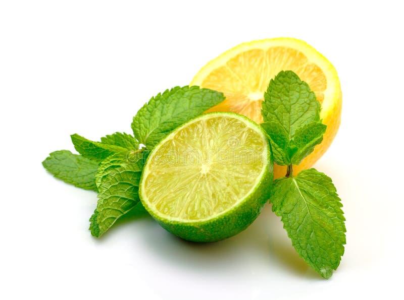 Citron, limette et menthe frais images libres de droits