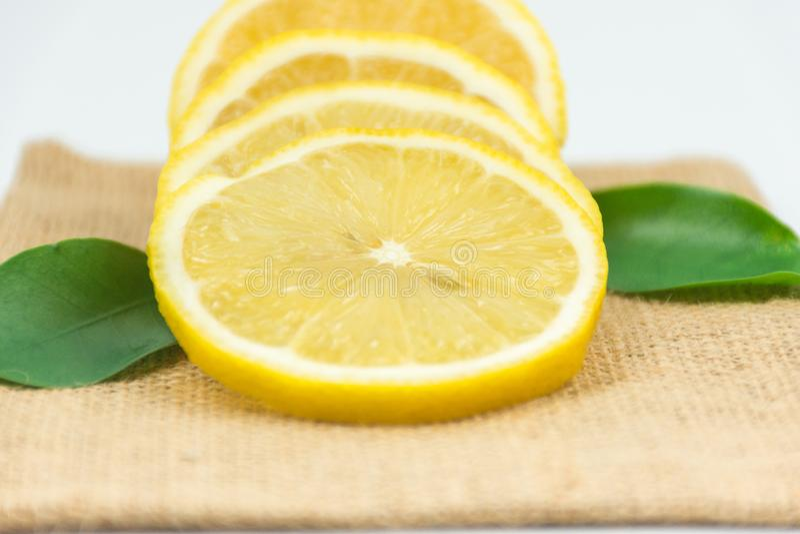Citron-nya forsar i studion royaltyfri fotografi