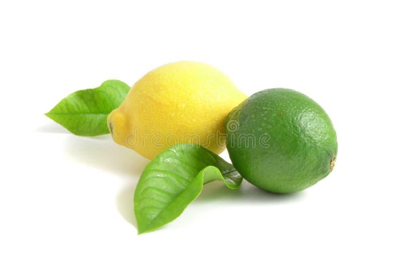 Citron och limefrukt arkivbilder