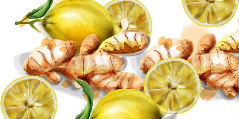 Citron och ljust rödbrun vattenfärgvektorbakgrund Nya organiska produkter royaltyfri illustrationer