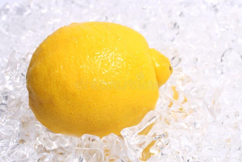 Citron på is royaltyfri foto