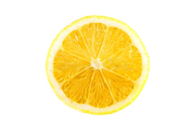 Citron på en vitbakgrund arkivfoto