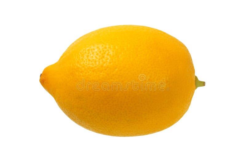 Citron på vit royaltyfria foton