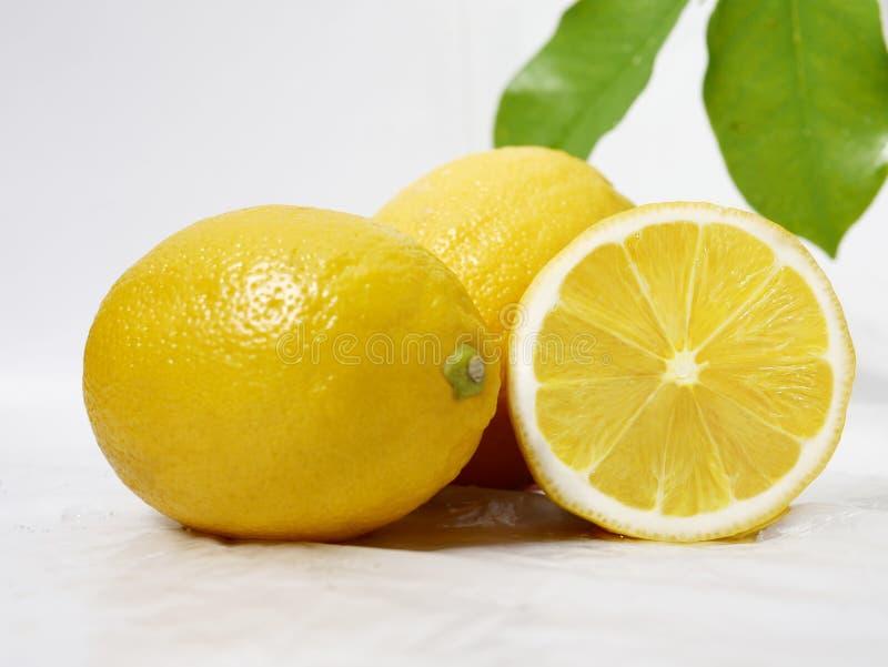Citron som är ny med bladet för fruktbild royaltyfria foton