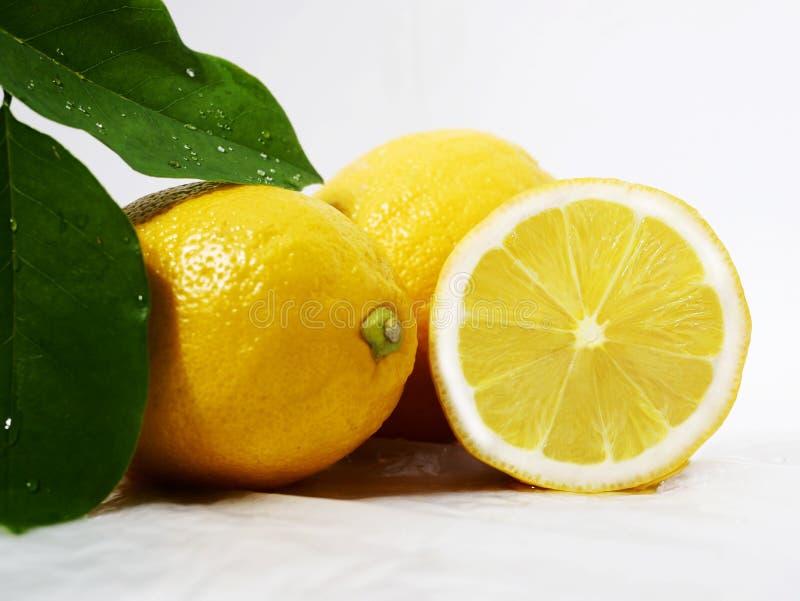 Citron som är ny med bladet för fruktbild royaltyfri foto