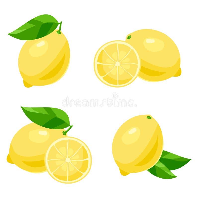 Citron vektor vektor illustrationer