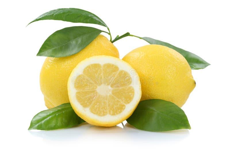 Citroncitroner med sidafrukter som isoleras på vit royaltyfri fotografi