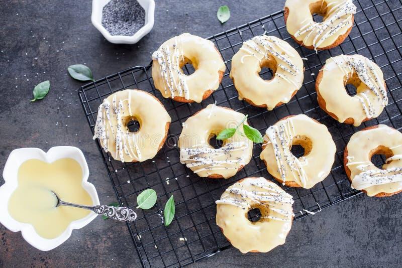 Citrondonuts royaltyfri fotografi