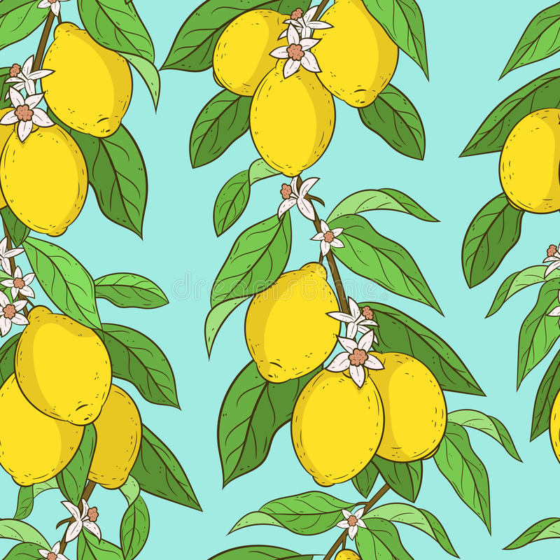 citroner mönsan seamless royaltyfria foton
