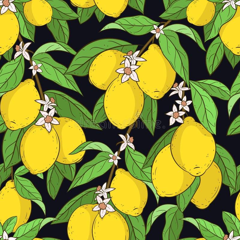citroner mönsan seamless arkivbild