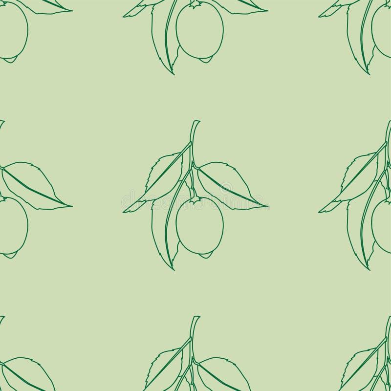 citroner m?nsan seamless Linje teckning som isoleras på ljust - grön bakgrund Nya frukter med sidor G?mma i handflatan med havet  vektor illustrationer