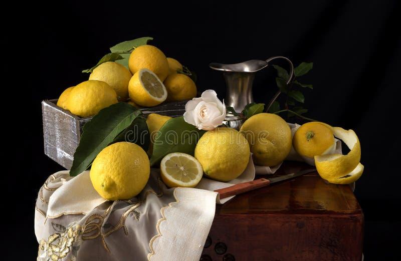 citronlivstid fortfarande royaltyfri foto