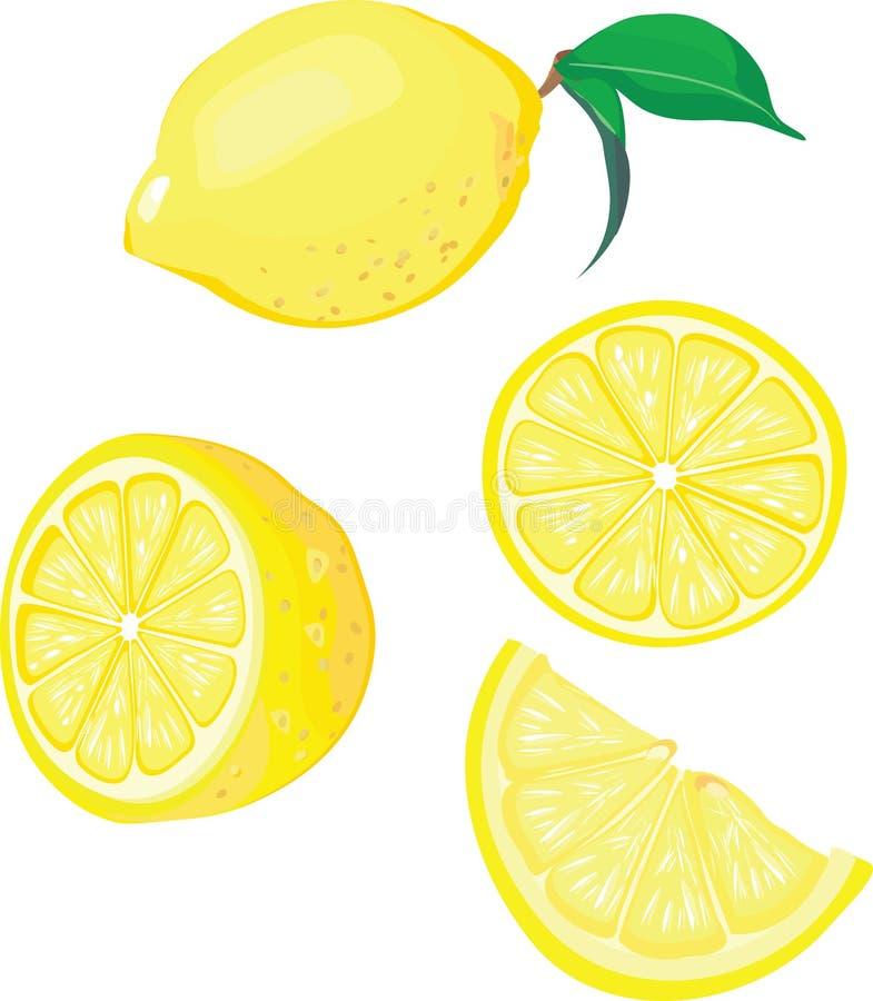citronmix vektor illustrationer