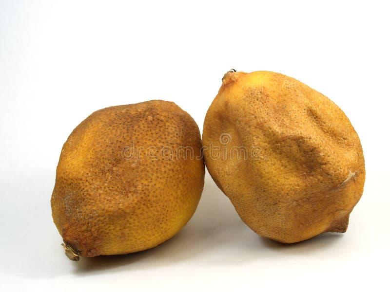 Citrons âgés Photos stock