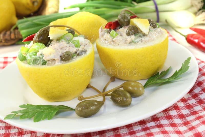 Citrons bourrés avec de la crème et des câpres de thon photographie stock