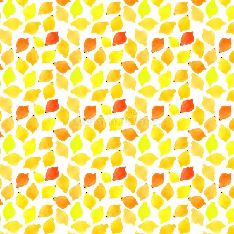 Citrons délicieux savoureux mignons doux délicieux tropicaux d'été d'agrume lumineux beaux, oranges, modèle de pamplemousses illustration libre de droits