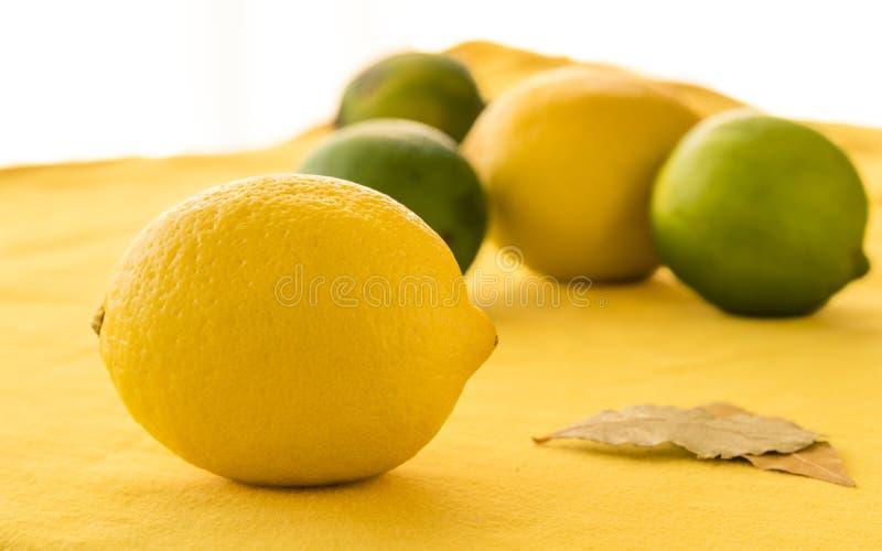 Citrons et chaux sur une surface jaune images libres de droits