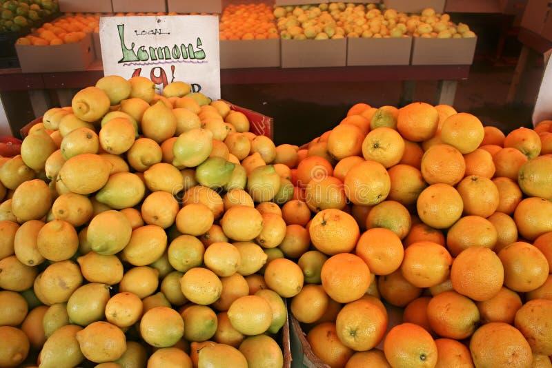 Citrons et oranges image libre de droits