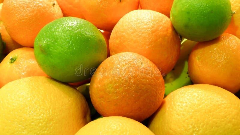 Citrons, oranges et limettes photo libre de droits