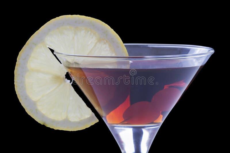 citronvermouth arkivfoton