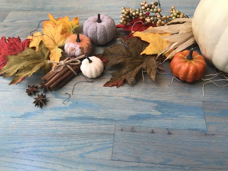 citrouilles et feuilles d'automne et épices image stock