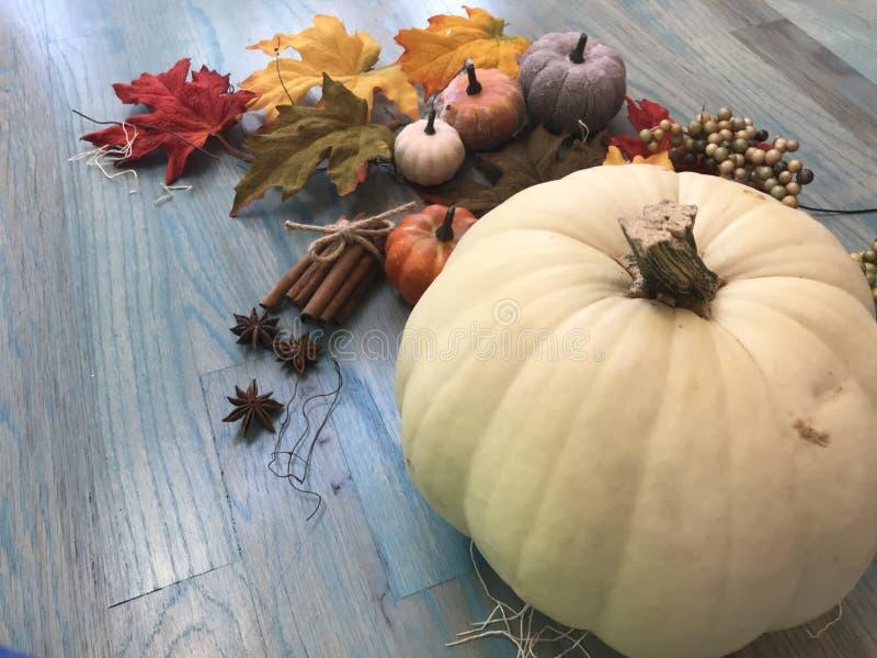 citrouilles et feuilles d'automne et épices vue d'en haut images libres de droits