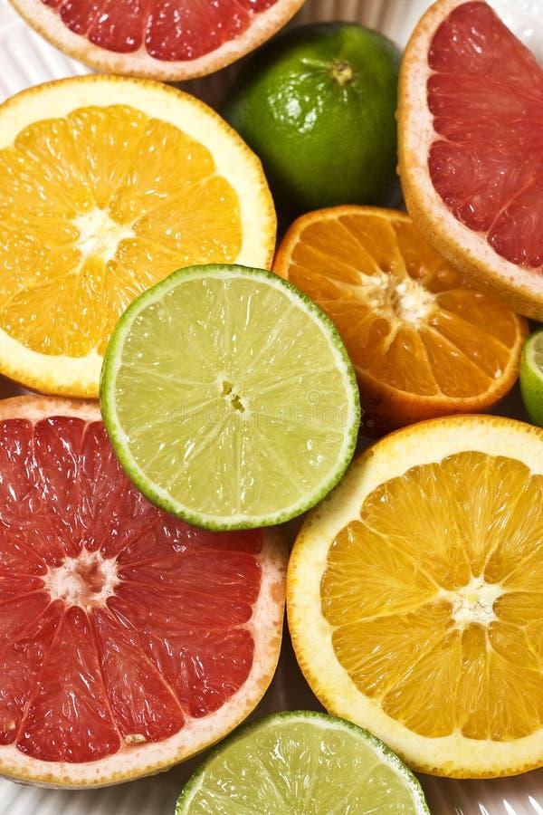 citrus royaltyfria bilder