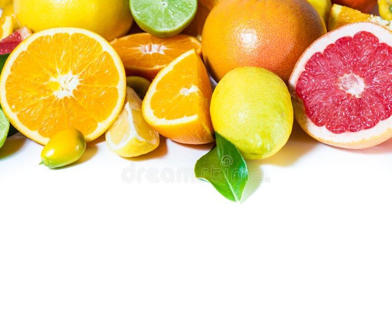 Download Citrus stock photo. Image of vitamin, orange, freshness - 25002376