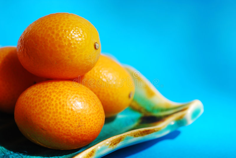 Citrus royalty free stock photo