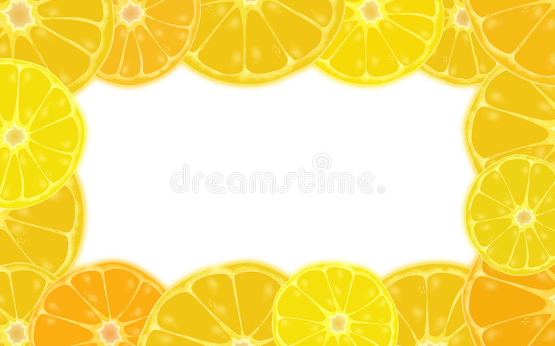 Citrus border stock photography