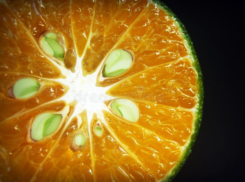 Citrus, Close-up, Colors royalty free stock image