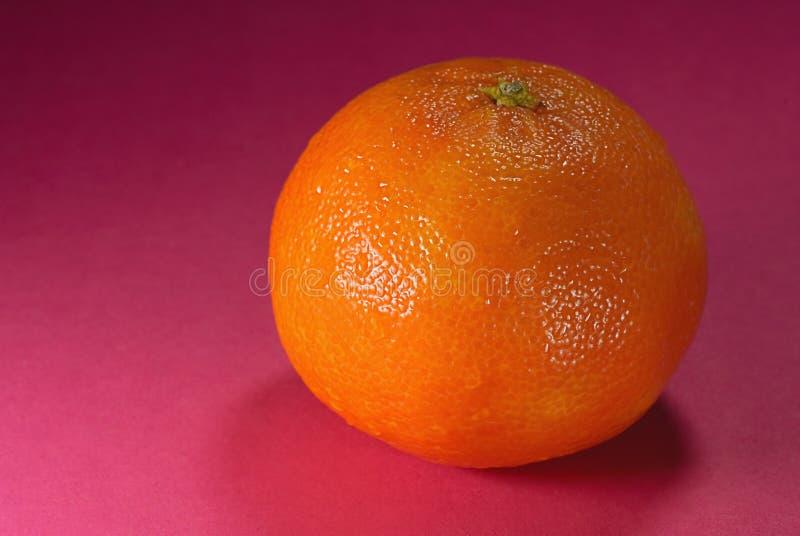 Download Citrus and drop stock image. Image of closeup, gourmet - 12145939