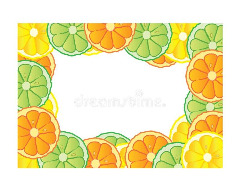 Download Citrus frame stock illustration. Image of lime, borders - 8256915