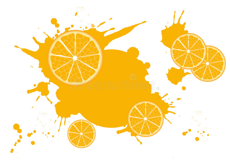 Citrus_frame. Slices of orange on a white background. Vector illustration of citrus fruits royalty free illustration