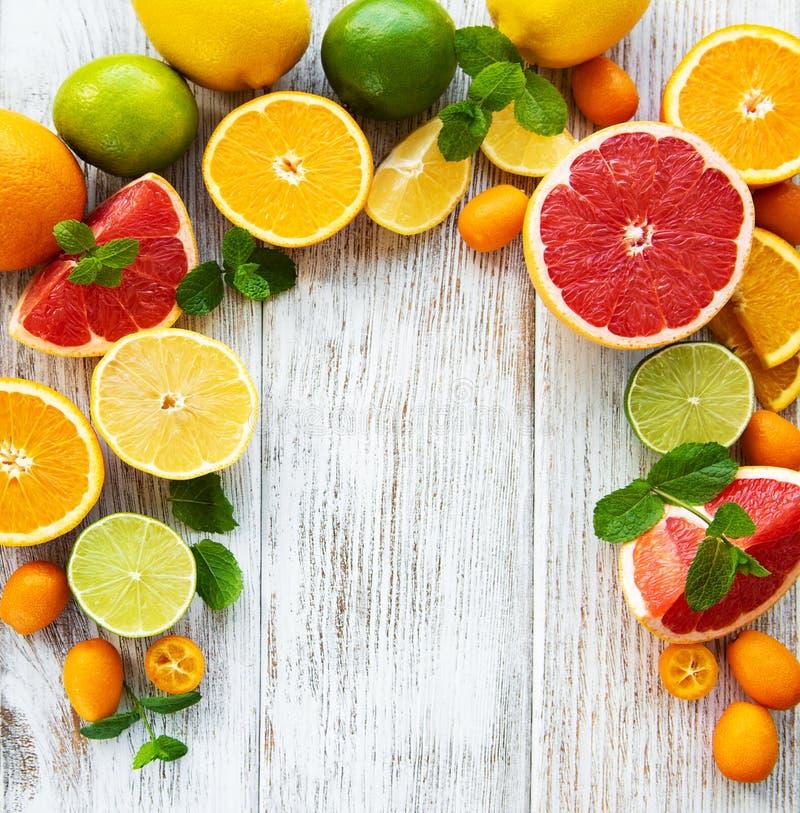 Citrus fresh fruits stock photography