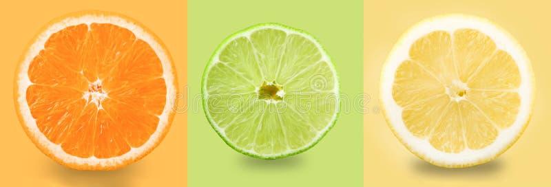 citrus fruit Πορτοκάλι, λεμόνι, ασβέστης Φέτες που απομονώνονται σε ένα χρωματισμένο υπόβαθρο r στοκ φωτογραφία με δικαίωμα ελεύθερης χρήσης