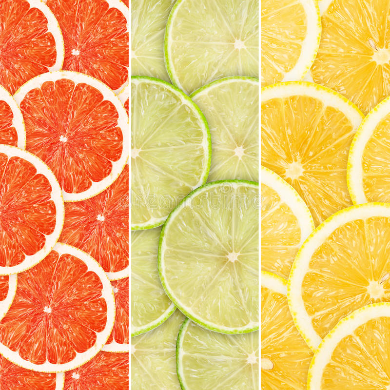 Citrus-fruit. Green background with citrus-fruit slices royalty free stock photo