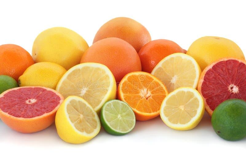 Citrus Fruit Selection stock image
