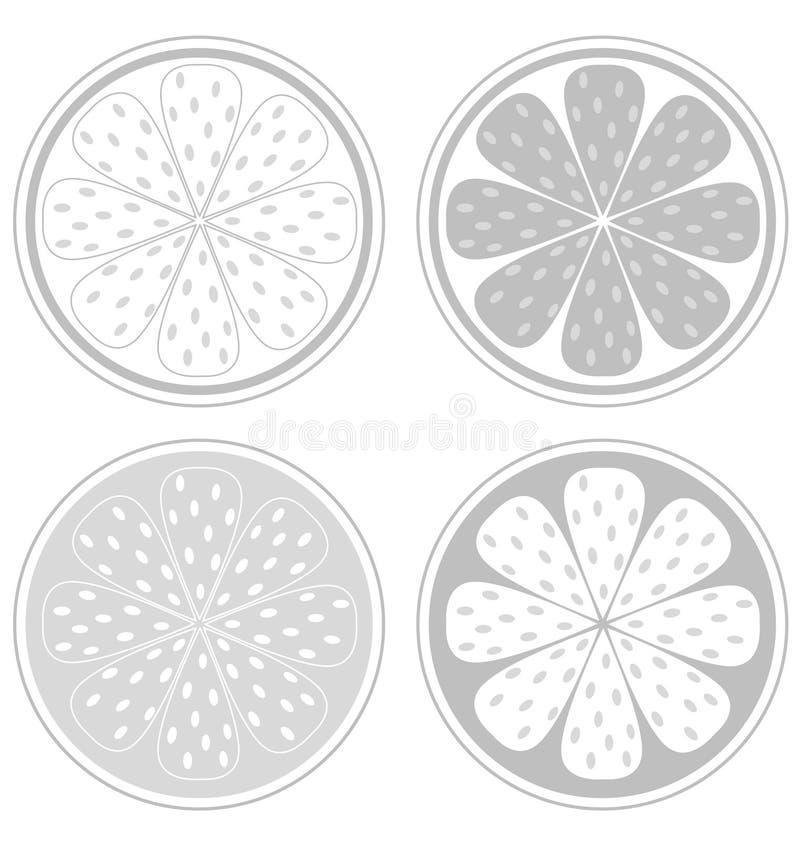 Citrus Fruit Slices Isolated On White Background Royalty Free Stock Image