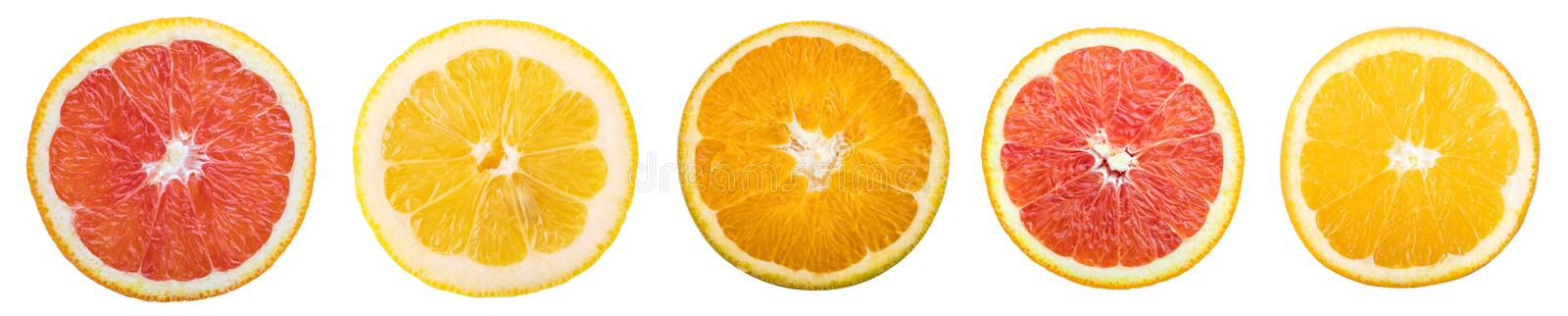Citrus fruit. Slices isolated on white background. Collection royalty free stock images