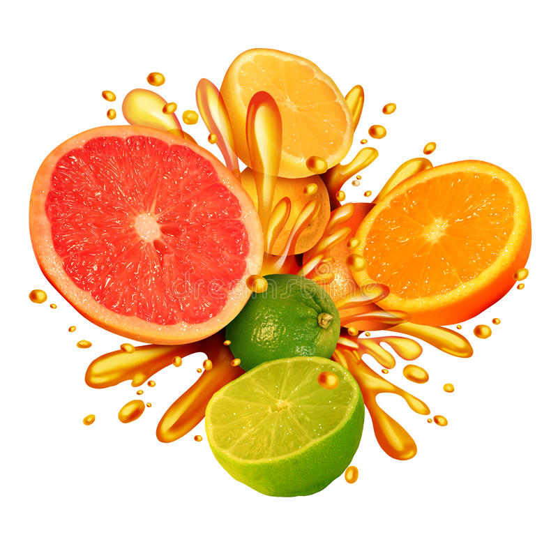 Citrus Fruit Splash royalty free illustration