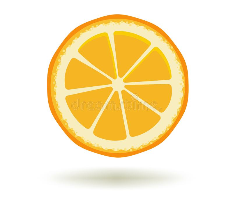 Citrus fruit. Vitamin C. Vector illustration of fresh ripe juicy orange slice with a shadow isolated on a white vector illustration