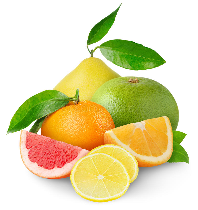 Download Citrus fruits stock image. Image of closeup, fruits, isolated - 18305277