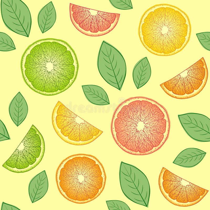 Citrus fruits. Vector Illustration of seamless pattern with abstract citrus fruits stock illustration