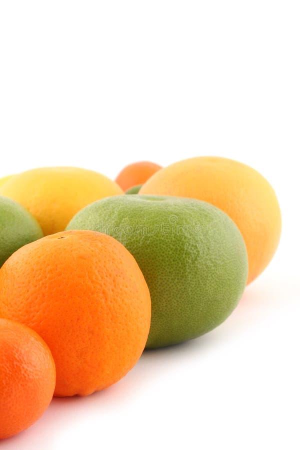Download Citrus fruits stock image. Image of exotic, food, organic - 4140695