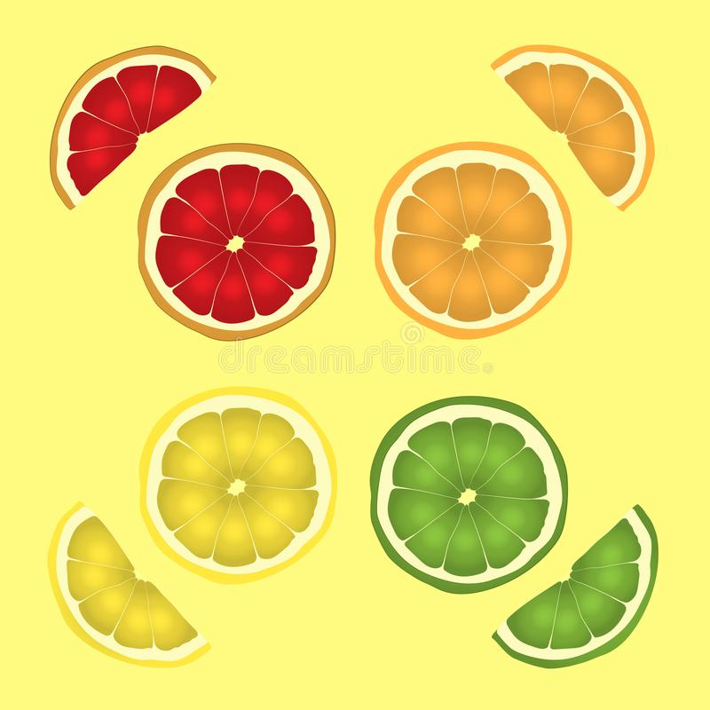 Citrus fruits in a cut. slicing a set of lemon, lime, orange and grapefruit. vector drawing illustration eps.10. Citrus fruits in a cut. the slicing set of lemon stock illustration