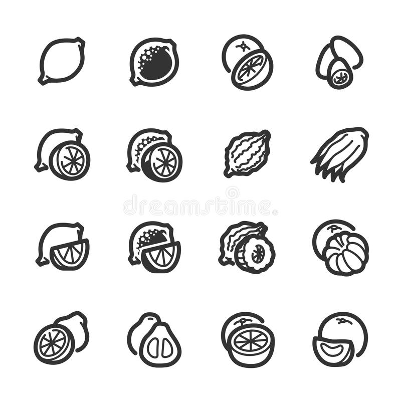 Citrus fruits icons – Bazza series royalty free stock photography